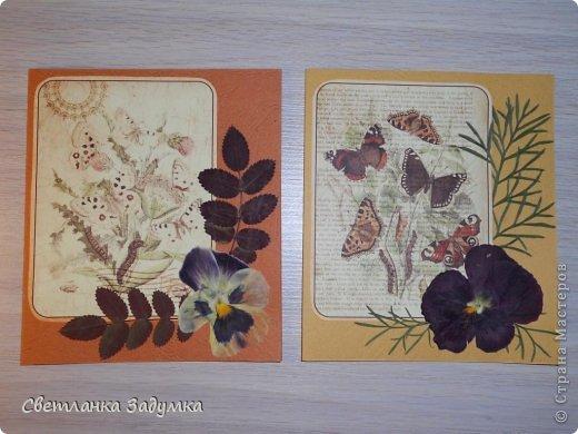 """Насмотрелась я на серии прекрасных открыточек у мастериц, и самой захотелось создать что-нибудь этакое. Лежал у меня лист бумаги красивый, с бабочками, любовалась да любовалась, но куда его сделать придумать не могла так и лежал с июня))) и вот.. наконец-то """"родилась"""" моя серия))) назвала ее """"Прощание с летом"""" Использовала сухие листья и цветы  Единственный минус - клеила листья на ПВА и после этого открытки чуть потряли форму, стали неровными, может клея много брала, или бумага тонковата... не знаю... в общем буду признательна если подскажете как устранить такой недостаток  Приятного просмотра)) фото 4"""