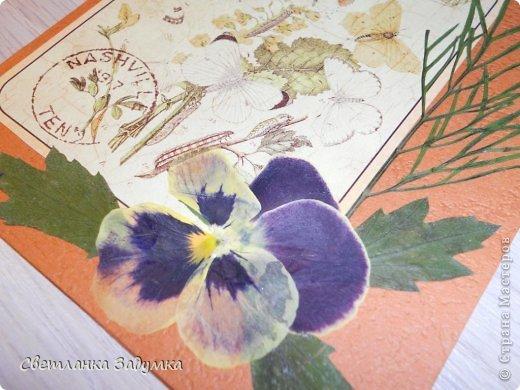 """Насмотрелась я на серии прекрасных открыточек у мастериц, и самой захотелось создать что-нибудь этакое. Лежал у меня лист бумаги красивый, с бабочками, любовалась да любовалась, но куда его сделать придумать не могла так и лежал с июня))) и вот.. наконец-то """"родилась"""" моя серия))) назвала ее """"Прощание с летом"""" Использовала сухие листья и цветы  Единственный минус - клеила листья на ПВА и после этого открытки чуть потряли форму, стали неровными, может клея много брала, или бумага тонковата... не знаю... в общем буду признательна если подскажете как устранить такой недостаток  Приятного просмотра)) фото 5"""