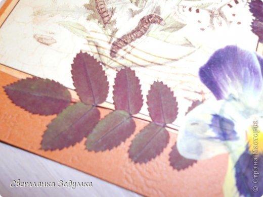 """Насмотрелась я на серии прекрасных открыточек у мастериц, и самой захотелось создать что-нибудь этакое. Лежал у меня лист бумаги красивый, с бабочками, любовалась да любовалась, но куда его сделать придумать не могла так и лежал с июня))) и вот.. наконец-то """"родилась"""" моя серия))) назвала ее """"Прощание с летом"""" Использовала сухие листья и цветы  Единственный минус - клеила листья на ПВА и после этого открытки чуть потряли форму, стали неровными, может клея много брала, или бумага тонковата... не знаю... в общем буду признательна если подскажете как устранить такой недостаток  Приятного просмотра)) фото 6"""