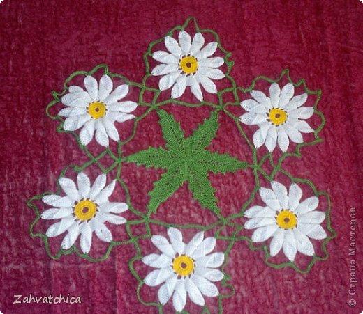 розы  в лучах фото 5