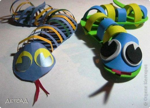 Вот такие змейки!!! фото 11