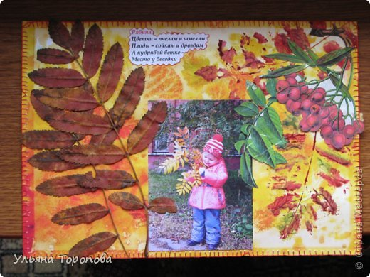 """Всем привет! Вот первые странички нашего альбома-гербария, выполненные в рамках проекта """"Каждому ребенку - гербарий"""", организованному ЛЁКА ЛЁКИНА. Всем заинтересованным сюда https://stranamasterov.ru/node/427335?tid=903 фото 4"""