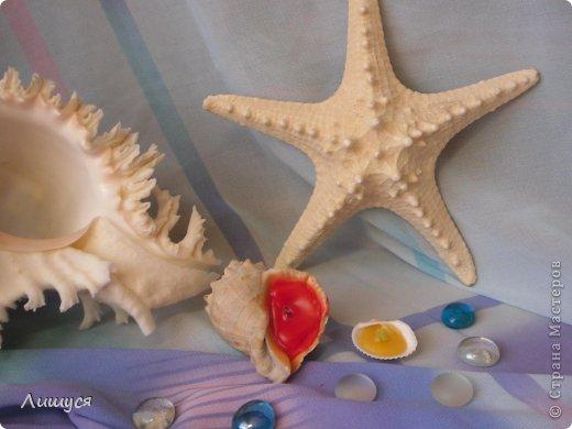 это я сделала на даче. лебедь. шея - покрашенная веточка. тело - флористическая губка (зелёная такая) фото 2