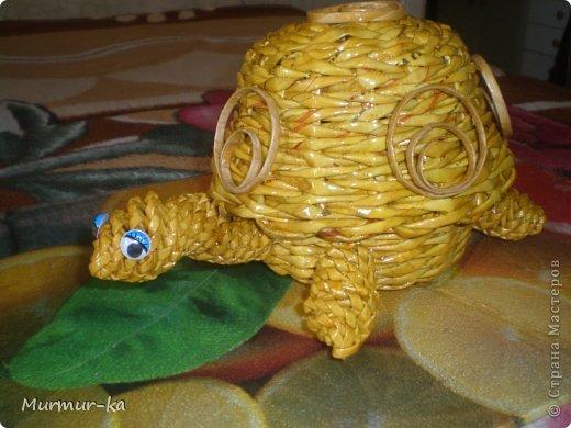 На создание этой черепашки меня подвигли работы жительниц СМ: Nila, иро4ка. Это конечный результат. фото 2