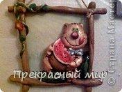 кот с арбузами фото 1