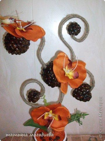 Давно хотела повторить что нибудь из работ Лены Балбекиной,вот выставляю на ваш суд жалкую попытку. Повторить конечно не удалось,но мне очень эта красотка орхидея-кофейная нравится.))) фото 4