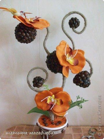 Давно хотела повторить что нибудь из работ Лены Балбекиной,вот выставляю на ваш суд жалкую попытку. Повторить конечно не удалось,но мне очень эта красотка орхидея-кофейная нравится.))) фото 1
