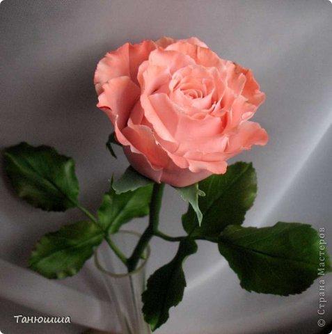 Привет всем! Вот мои последние розы (ухожу в отпуск насчёт лепки, но думаю ненадолго :)) Планов много, зима впереди, буду осваивать новые цветочки.  фото 6