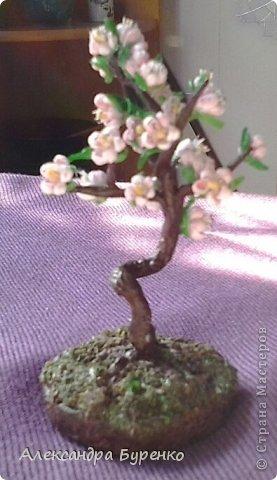 Здравствуйте. Представляю Вам сакуру. Это первое дерево из трех, остальные в процессе. Не хватило терпения доделать и выставить все три. фото 2