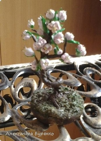 Здравствуйте. Представляю Вам сакуру. Это первое дерево из трех, остальные в процессе. Не хватило терпения доделать и выставить все три. фото 3