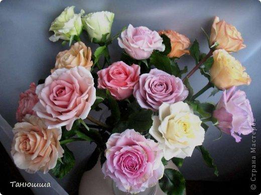 Привет всем! Вот мои последние розы (ухожу в отпуск насчёт лепки, но думаю ненадолго :)) Планов много, зима впереди, буду осваивать новые цветочки.  фото 13