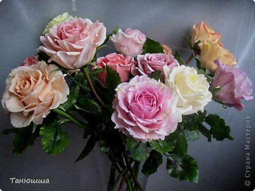 Привет всем! Вот мои последние розы (ухожу в отпуск насчёт лепки, но думаю ненадолго :)) Планов много, зима впереди, буду осваивать новые цветочки.  фото 12