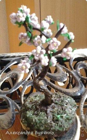 Здравствуйте. Представляю Вам сакуру. Это первое дерево из трех, остальные в процессе. Не хватило терпения доделать и выставить все три. фото 4
