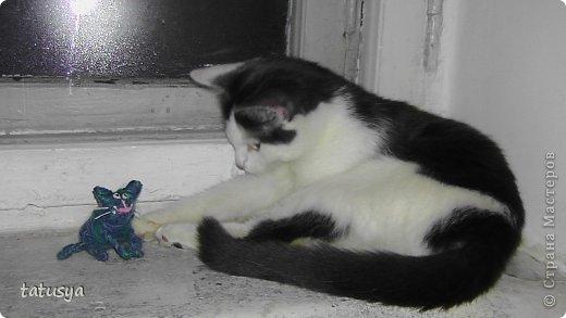 Котенок на монитор)) фото 4