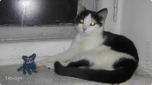 Котенок на монитор)) фото 3
