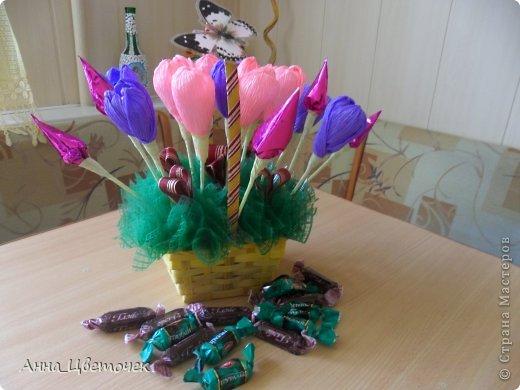 сладкие тюльпаны фото 2