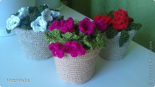 Вязание крючком цветы в горшках нитки