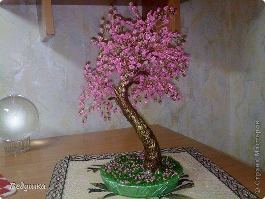 Вот еще одно деревце родилось... Почему то назвать его сакура, язык не поворачивается, почему -не знаю... фото 1