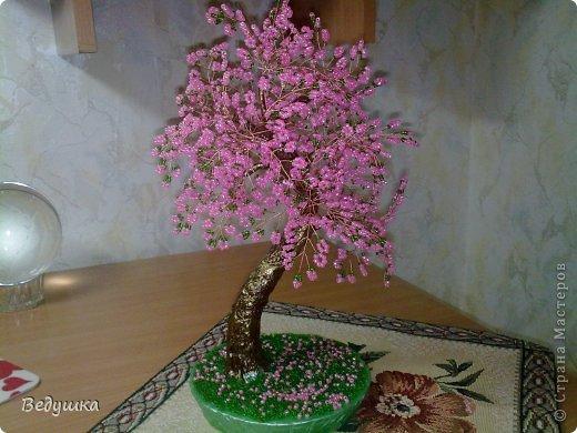 Вот еще одно деревце родилось... Почему то назвать его сакура, язык не поворачивается, почему -не знаю... фото 4