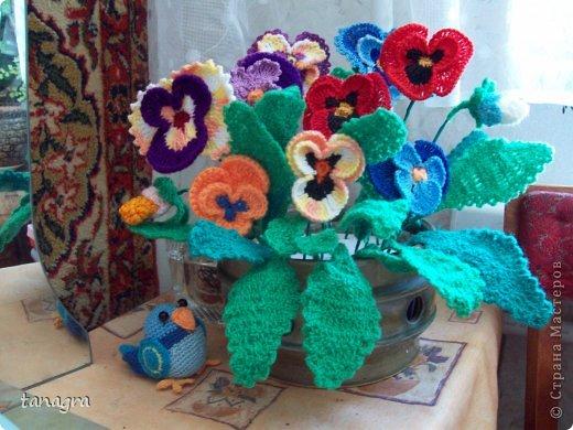 крючком Мои вязанные цветы