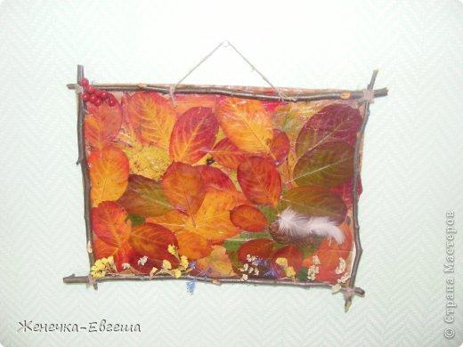 на картон клеем пва наклеены листья черноплодной рябины, уж больно они красивы..., а рамочку сделала из веток.. фото 1
