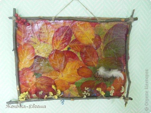 на картон клеем пва наклеены листья черноплодной рябины, уж больно они красивы..., а рамочку сделала из веток.. фото 3