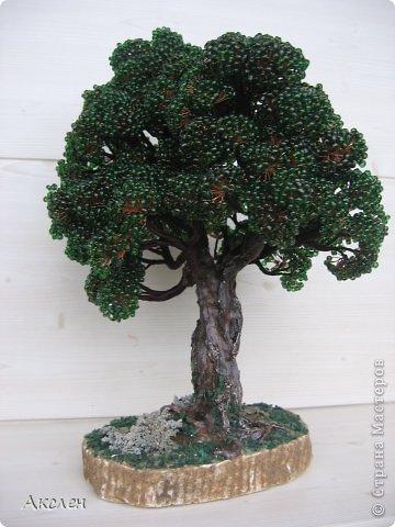 """Делала это дерево по книге """"Природа и бисер"""", результатом довольна но он далек от оригинала. Крутила из крупного бисера №6 , крутила очень долго.  фото 2"""