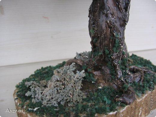 """Делала это дерево по книге """"Природа и бисер"""", результатом довольна но он далек от оригинала. Крутила из крупного бисера №6 , крутила очень долго.  фото 4"""