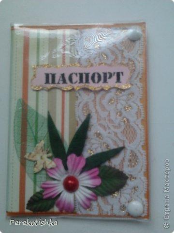 """Одёжка для моего паспорта Всем, кто посмотрел """"СПАСИБО"""" фото 6"""
