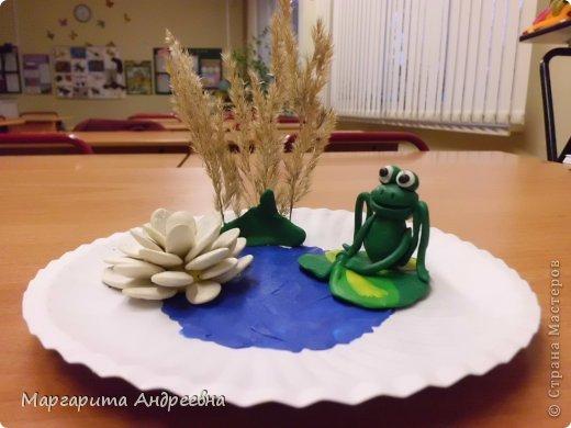 Лягушечка фото 1