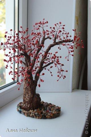 Бонсай топиарий Бисероплетение Мои деревья из бисера Бисер фото 1.