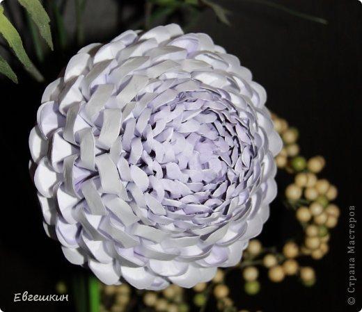 строгой геометрии цветка.