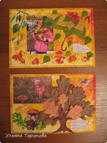 """Всем привет! Вот первые странички нашего альбома-гербария, выполненные в рамках проекта """"Каждому ребенку - гербарий"""", организованному ЛЁКА ЛЁКИНА. Всем заинтересованным сюда https://stranamasterov.ru/node/427335?tid=903 фото 8"""
