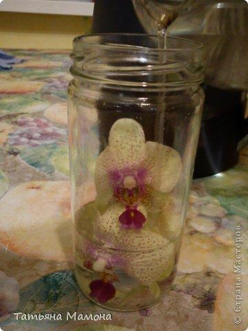 Добрый вечер жители СТРАНЫ МАСТЕРОВ! Сегодня хочу Вам представить МК по консервации цветов в растворе глицерина. Очень хочу, чтобы цветы радовали подольше!!! фото 5