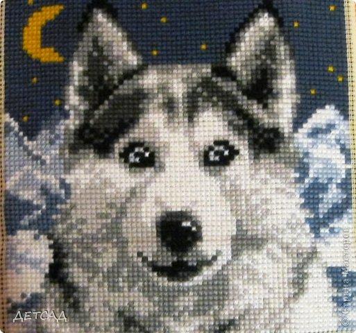 Схемы вышивок собак хаски