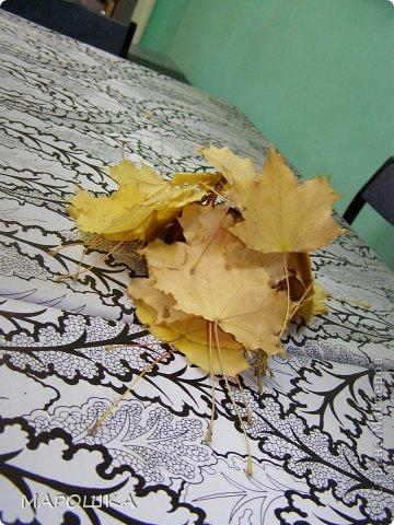 проба вырезания по осенним листьям как-то мимоходом вышла...смотрела что с дошколятами из листиков можно сделать - наткнулась на дюрановские листья - его лист кленовый, как у Дадашовой из треугольников рисунок...как делается роспись по листьям не поняла, а попробовать вырезать захотелось...  фото 12