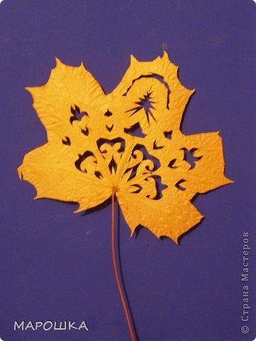 проба вырезания по осенним листьям как-то мимоходом вышла...смотрела что с дошколятами из листиков можно сделать - наткнулась на дюрановские листья - его лист кленовый, как у Дадашовой из треугольников рисунок...как делается роспись по листьям не поняла, а попробовать вырезать захотелось...  фото 1
