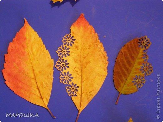 проба вырезания по осенним листьям как-то мимоходом вышла...смотрела что с дошколятами из листиков можно сделать - наткнулась на дюрановские листья - его лист кленовый, как у Дадашовой из треугольников рисунок...как делается роспись по листьям не поняла, а попробовать вырезать захотелось...  фото 11