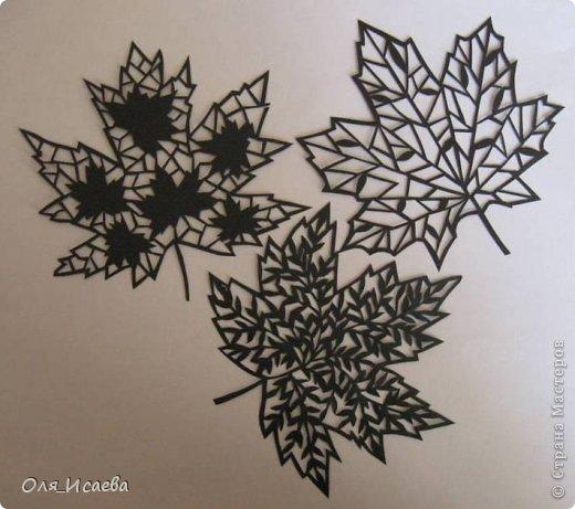 Открытка Вырезание Кленовые листья Бумага фото 1