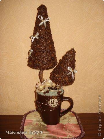 Вот такой у меня получился кофейный топиарий!Это первая работа с кофейными зёрнами. фото 5