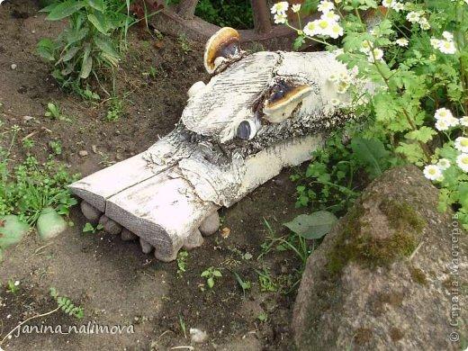Обожаю из ничего придумывать различные поделки для украшения своего двора.. Вот голова медведя из чурки.Уши - деревянные грибы. фото 24