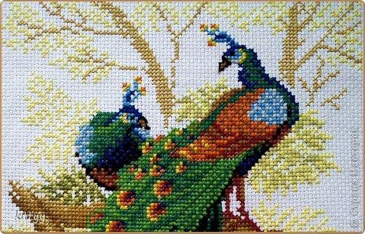 Вышивкам крестом схемы птица счастья