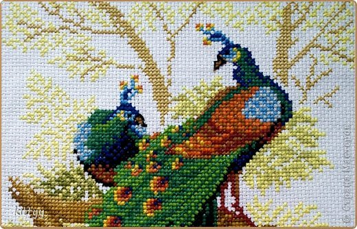 Вышивка крестом птица
