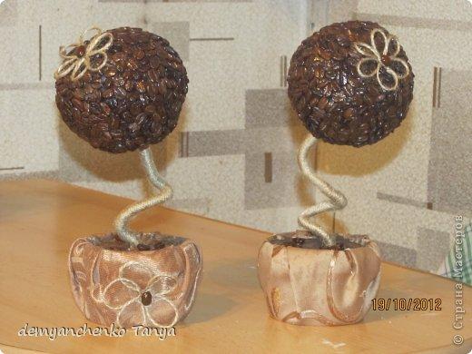 Здравствуйте, дорогие мастерицы! Спасибо большое за такую интересную идею кофейного дерева! Я попробовала и по-моему у меня получилось!!! фото 3