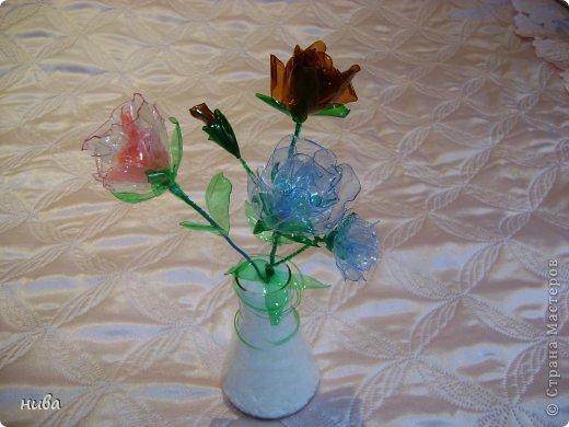 Райские яблочки и розы из пластиковых бутылок фото 2