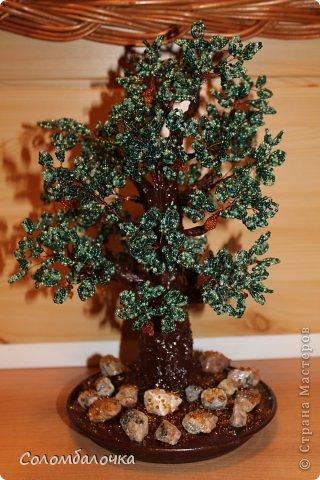 Декор предметов Бисероплетение Деревья и цветы из бисера Бисер Гипс Проволока фото 1.