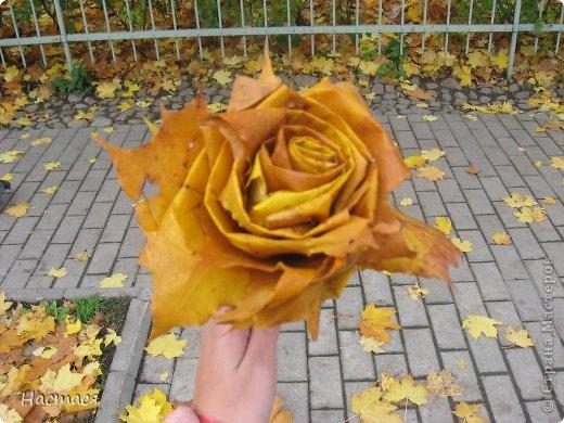 Розочка из кленовых листьев (экспромт) фото 1