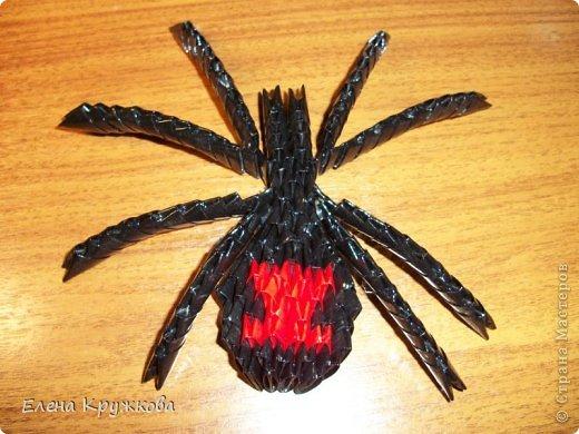 Сегодня я расскажу как изготовить вот такого паука. На изготовление подобной вещи навеял приближающийся праздник Хэллоуин фото 1