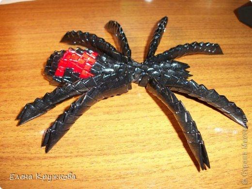 Сегодня я расскажу как изготовить вот такого паука. На изготовление подобной вещи навеял приближающийся праздник Хэллоуин фото 22
