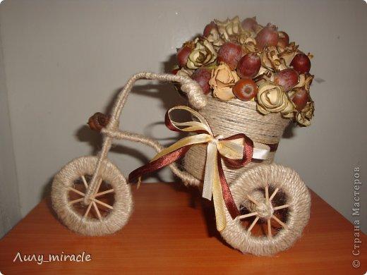 Поделка изделие Моделирование конструирование У меня тоже есть велосипедик  Жёлуди Материал природный Проволока Шпагат фото 1